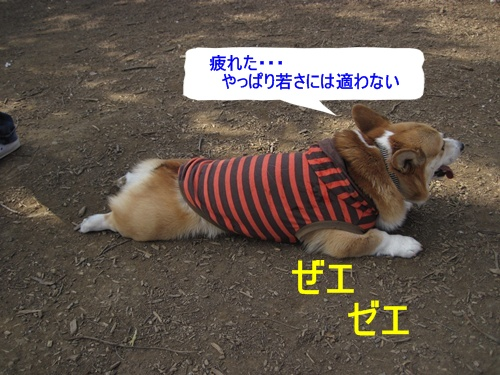 IMG_7388休憩