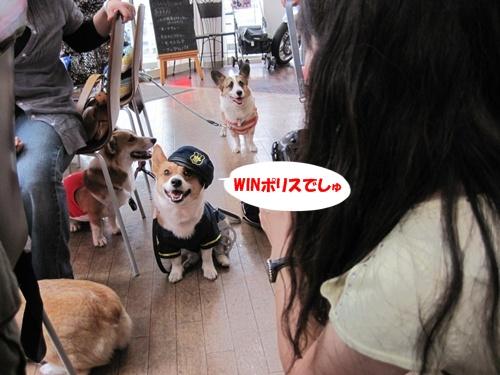 IMG_1418WINちゃんポリス