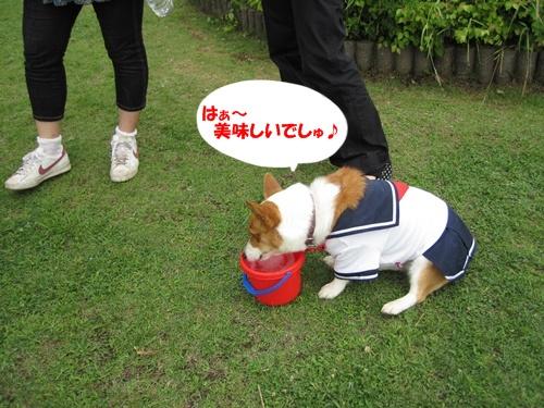 IMG_1443WINちゃん