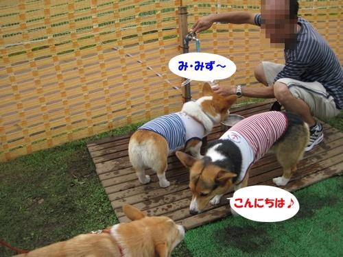 IMG_1438空君・海君