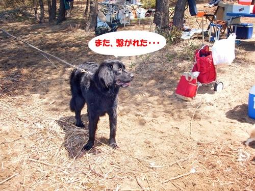 DSCF0758猪苗代湖