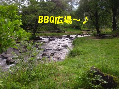 れ-IMG_3117