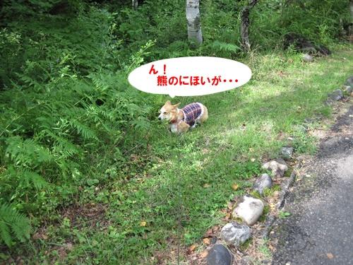 て-IMG_3063