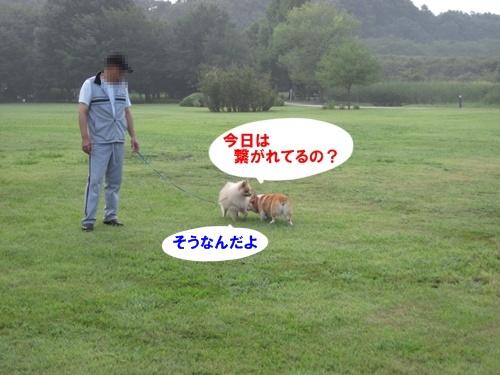 IMG_3185.jpg