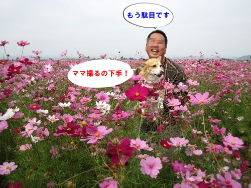 IMG_6302.jpg