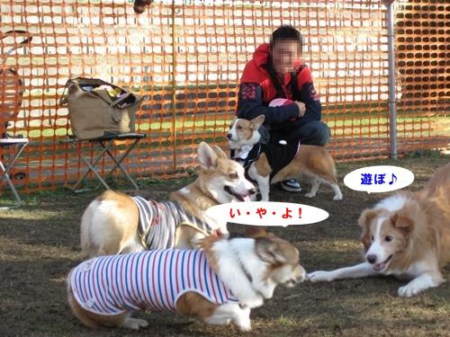 IMG_7120.jpg