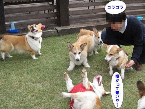 IMG_7463.jpg