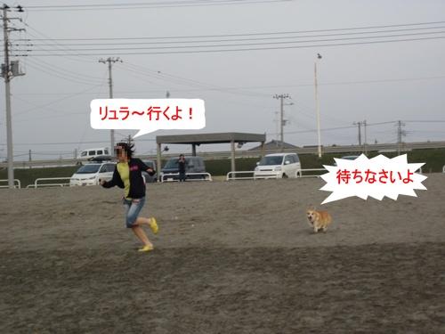 IMG_8761.jpg