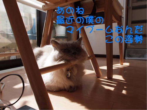 僕ごんちゃん (2)