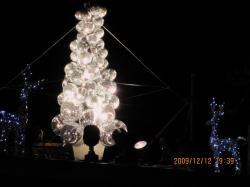 2009-12-christmas+014_convert_20091215163338.jpg