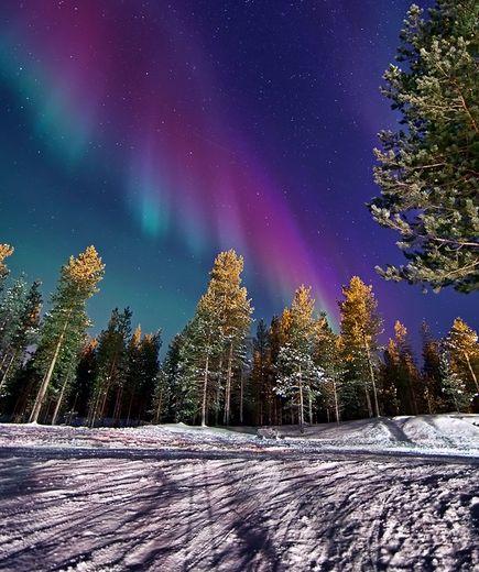 january-2012-aurora-borealis-finland_47693_big.jpg