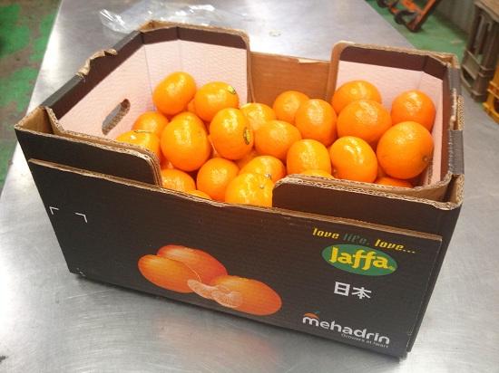 blog_mandarin01.jpg