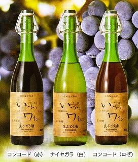 井筒ワイン果汁発酵生ワイン入荷!