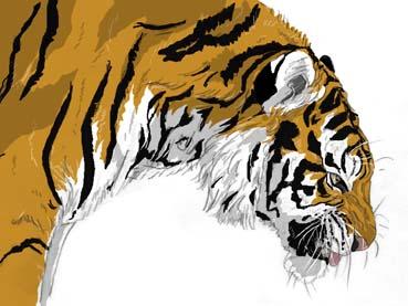 虎横顔んがっ