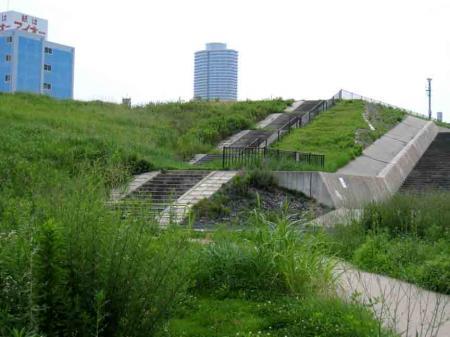 西区の野球場脇の階段