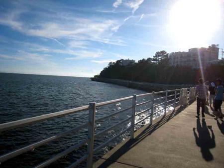 日間賀島 南川 海と道