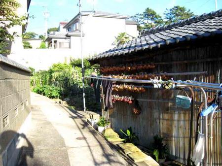 日間賀島 坂道6