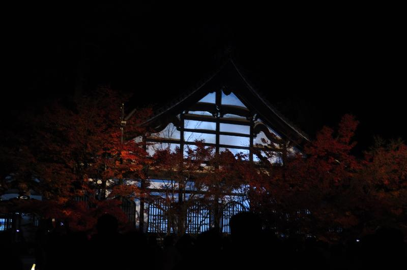 京都 永観堂 紅葉 ライトアップ