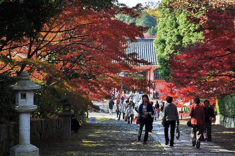 京都 真如堂 紅葉