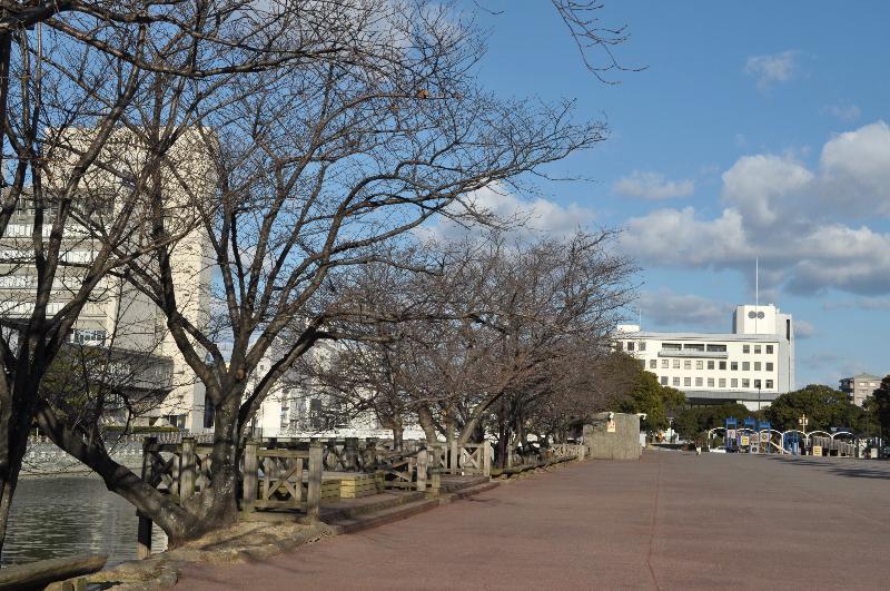 徳島市 新町川周辺 風景