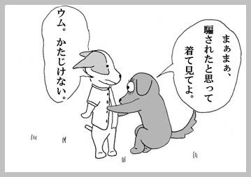 犬服業界物申す。2