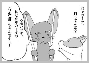 ウサギなんです。2