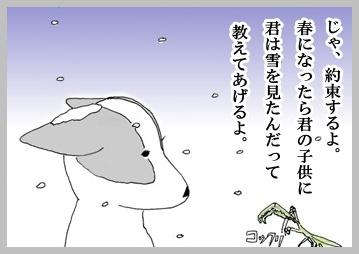 雪の中でカマキリ4