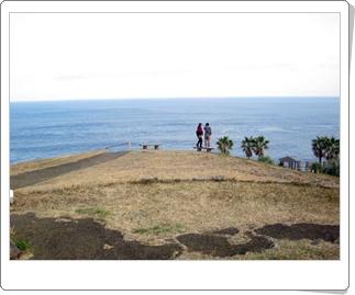 都井岬から青島へ。4