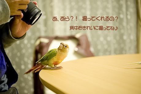 13DSC_9598.jpg