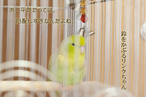 _S7W1322-2.jpg