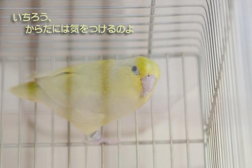 _S7W1340-2.jpg