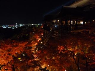 2013-11-29 清水寺 (23)
