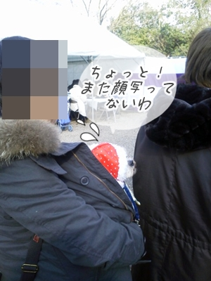 NEC_0501.jpg