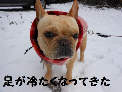 222_10convert_20120119014031.jpg