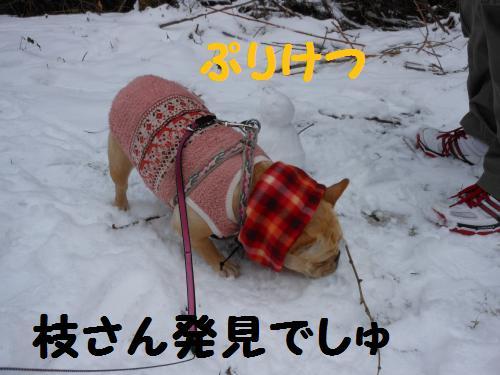 222_11convert_20120119014240.jpg