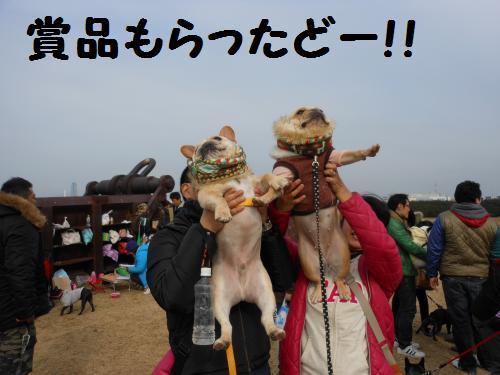 222_12convert_20120123042159.jpg