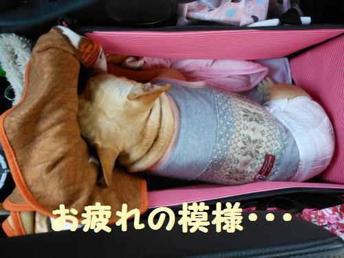 222_15convert_20120322001314.jpg