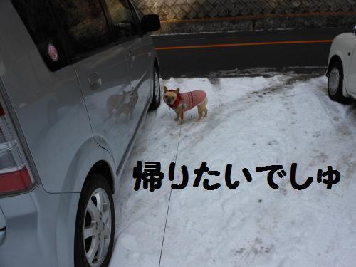 222_17convert_20120119014152.jpg