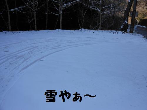 222_1convert_20120119013251.jpg