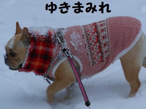 222_7convert_20120119013819.jpg