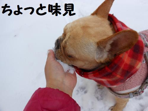 222_9convert_20120119013944.jpg