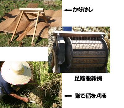 『昔の稲刈り体験』2009年091006b