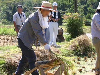 『昔の稲刈り体験』2009年091006d