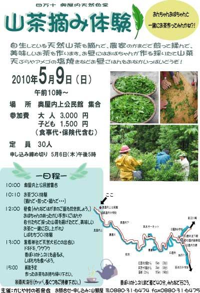 山茶摘体験2010年100407a