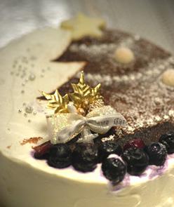 christmascake20091218a.jpg