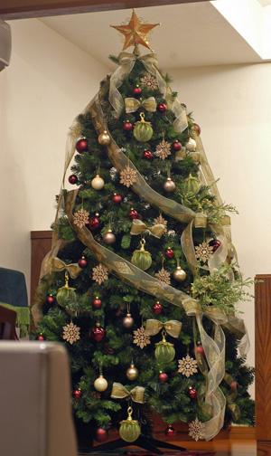 tree20091117-5.jpg