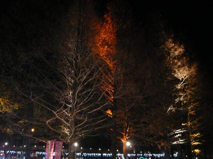 #4karuizawa illumination