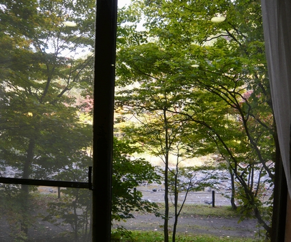 P1100123 river view