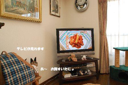 20091121kotetsu4.jpg