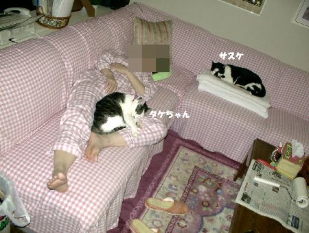 20101219takeshisasuke.jpg